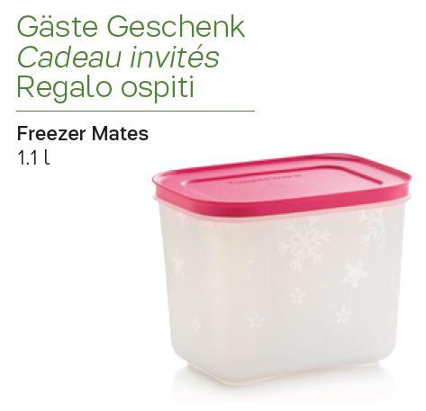 Freezer mates 1,1 L - Cadeau gratuit en assistant à une réunion Tupperware en septembre 2019 en Suisse
